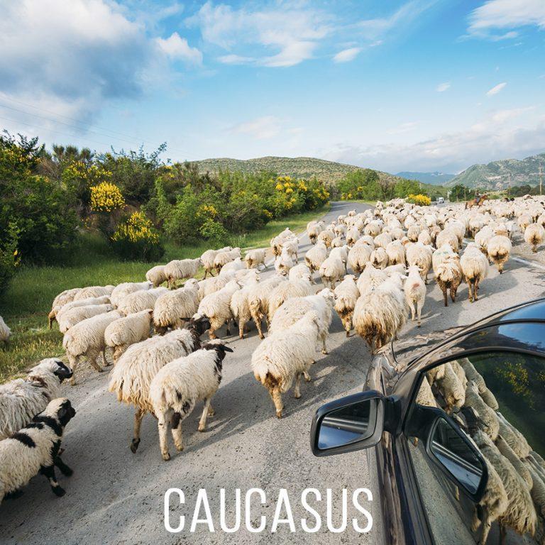 Кавказ. Грузия. Как попасть на авто взятом в аренду