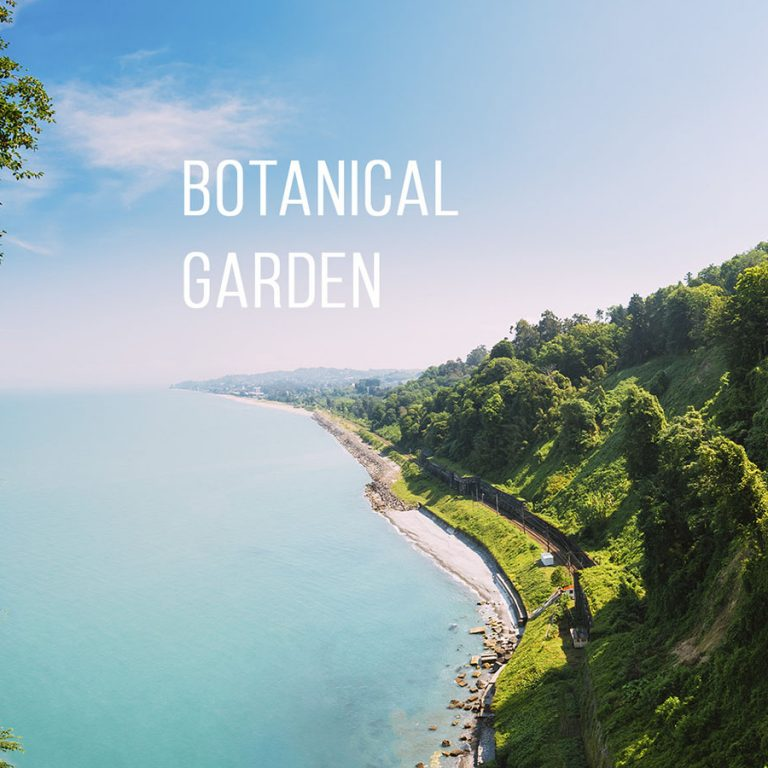 Batumi Botanical Garden, how to get by rented car